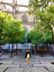 Giardino delle arance sotto la giralda di Siviglia Spagna