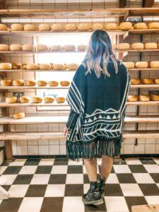 Negozio di formaggi Gouda Zaanse Schans Olanda