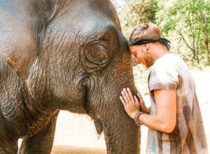 Incontro con elefante nella giungla a Chiang Rai